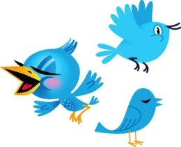 twitter birds web preview 260x212